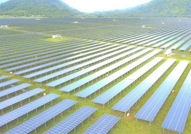 an_giang_sao_mai_solar