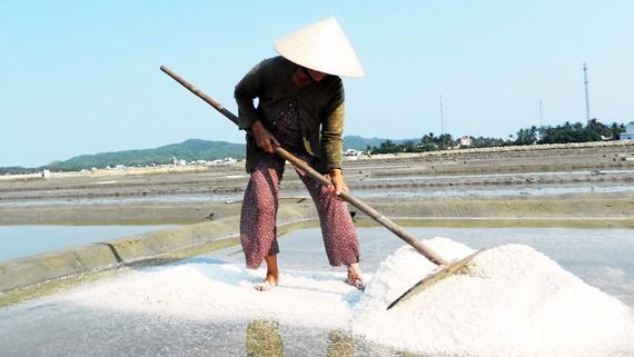 salt_industry